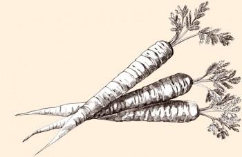 Contiene caroteno y otros nutrientes y fibras beneficiosas.